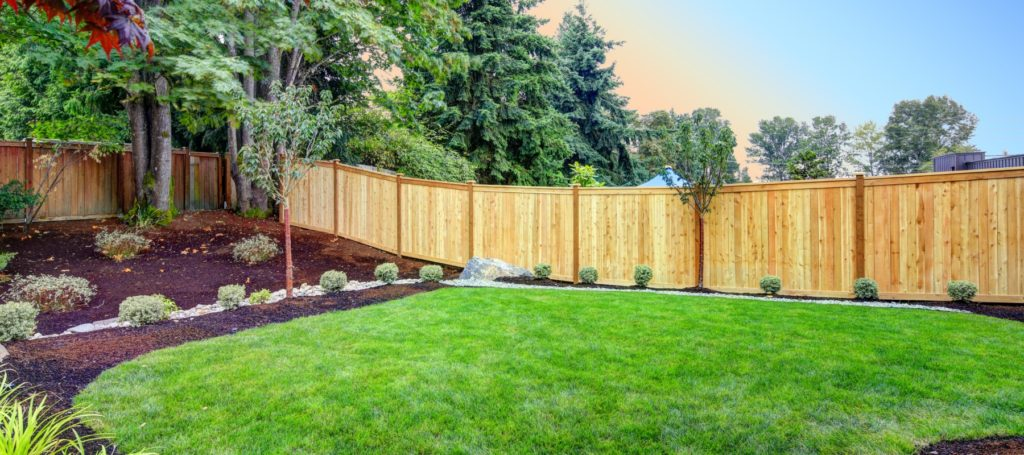 Raleigh Fence Restoration Services